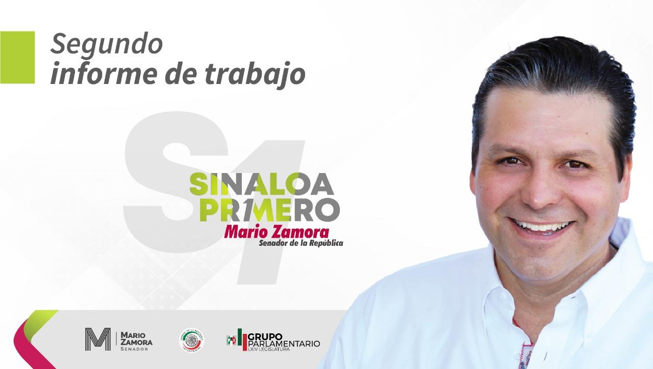 Segundo Informe de Trabajo: Mario Zamora Gastélum